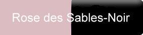 Farbe_rose-des-sables-noir_gerbe